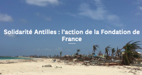 La Fondation de France a engagé 9,32 M€ de dons à Saint-Martin